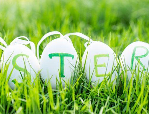 Osterbräuche und das Wunderwerk Ei