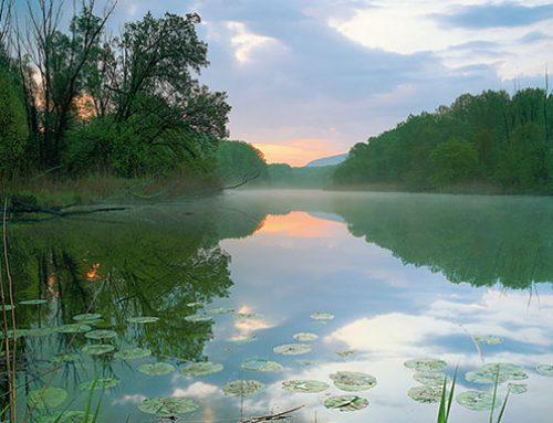 Nationalpark Donau-Auen: Schlösser und Schmankerln